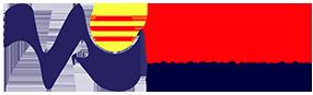 Vietnamese Association Of Illinois